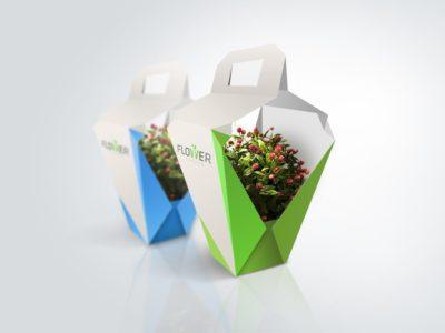 Оригинальный дизайн упаковки для домашних растений компании Flower Garden